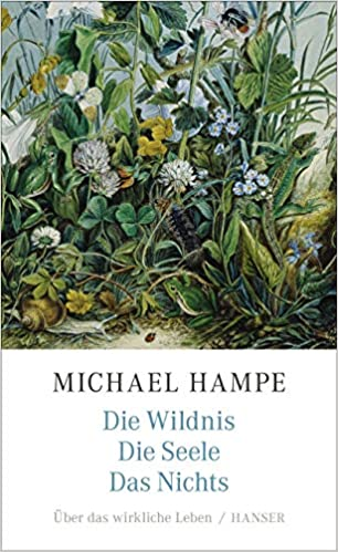 Hampe-Wildnis